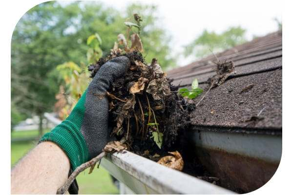 gutter cleaning services mackay - 2